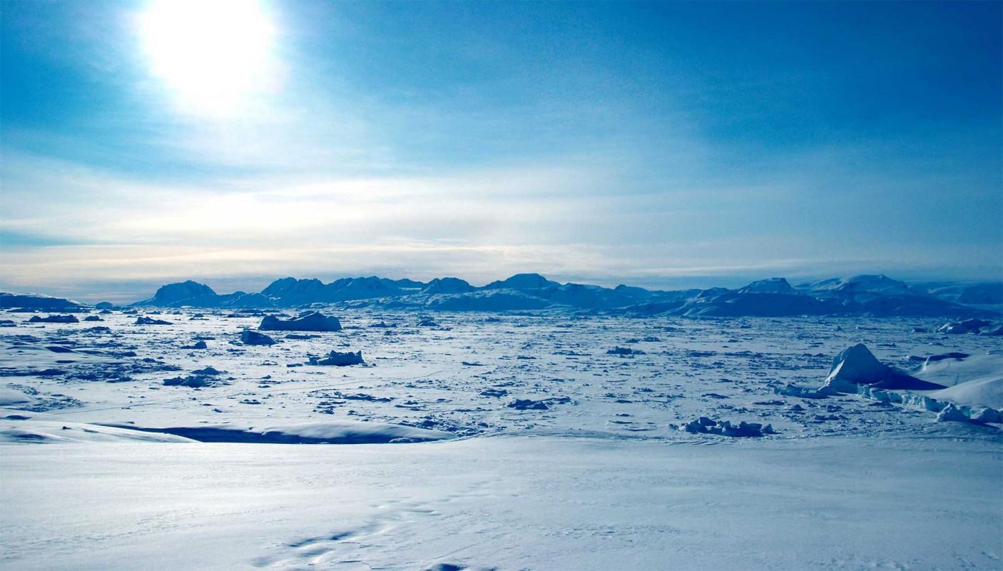 Арктическая пустыня картинка для детей